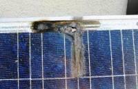 Puntos calientes en un panel solar barato