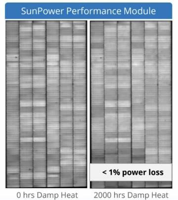 Electroluminiscencia panel solar fotovoltaico P19 tras test de humedad